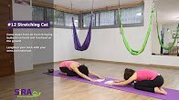 Stretching Cat – exercise #12