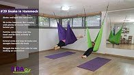 Snake in the Hammock – exercise #29