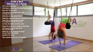 A Bird Rotates on a Swing – exercise #168