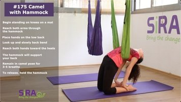 Camel with Hammock – exercise #175